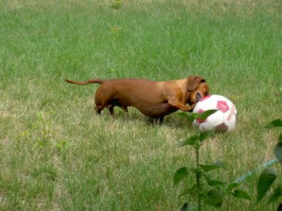 rusty-soccer